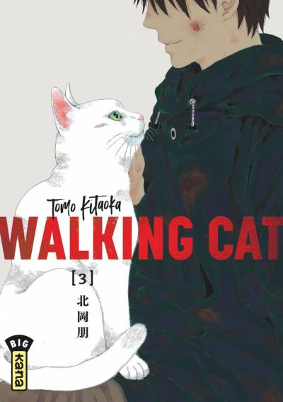 WALKING CAT #3
